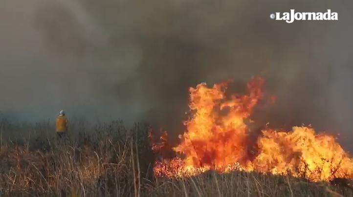 Continúa incendio en Xochimilco