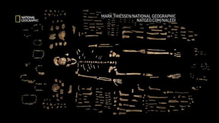 Huesos en cueva de Sudáfrica revelan nuevo ancestro humano