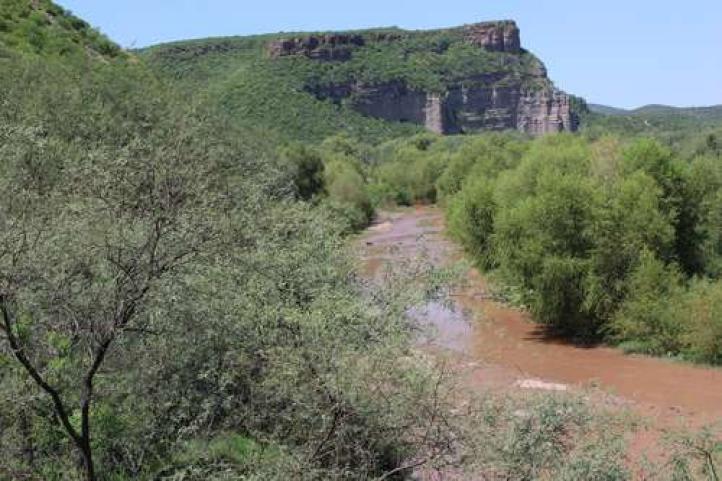 Grupo México devastó la economía en la cuenca del río Sonora: vecinos