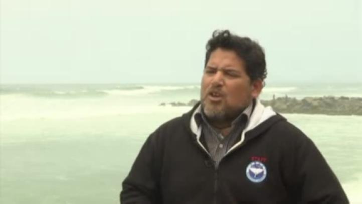 Lobos marinos se convierten en una atracción turística de Perú