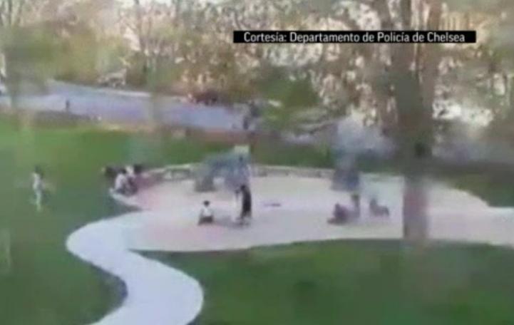 EU: Árbol cae sobre dos niños en un parque