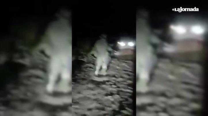 Pobladores de Hidalgo acusan emboscada de militares