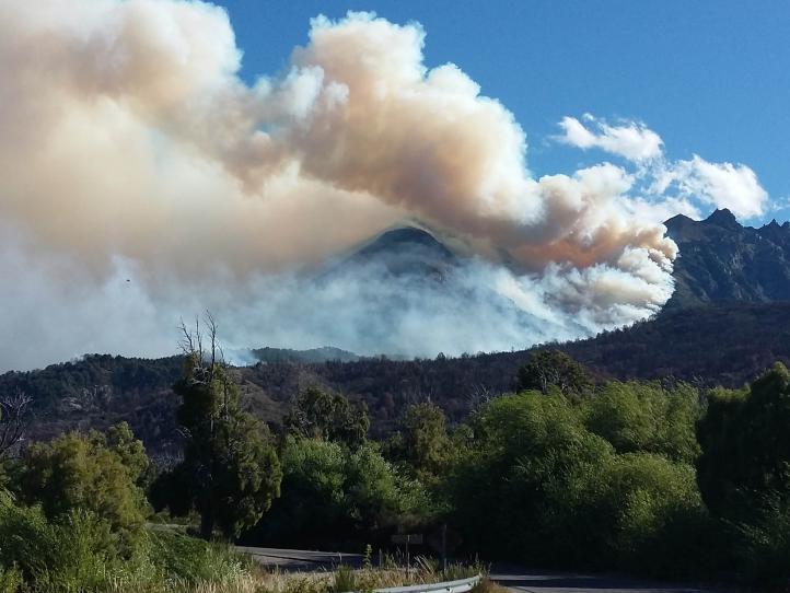 Incendios destruyen 1,600 hectáreas de bosque en Argentina