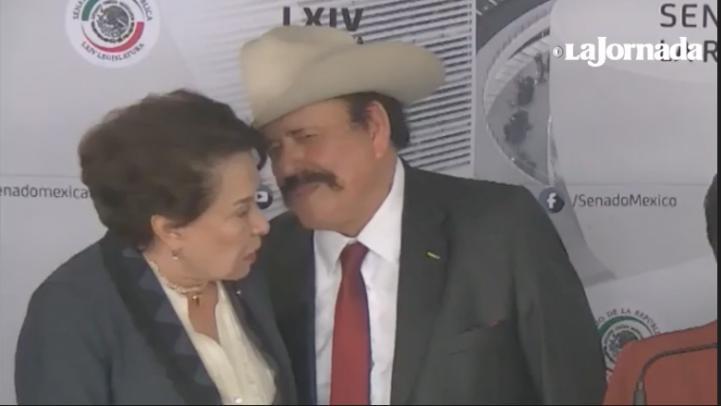 'Parecen retrasados mentales': Senadora de Morena a reporteros