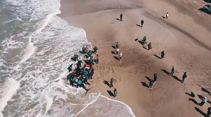 Siete orcas encallan en costa argentina; rescatan a seis