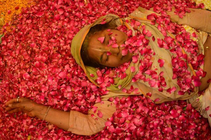 Viudas de India participan de festival que tienen prohibido celebrar