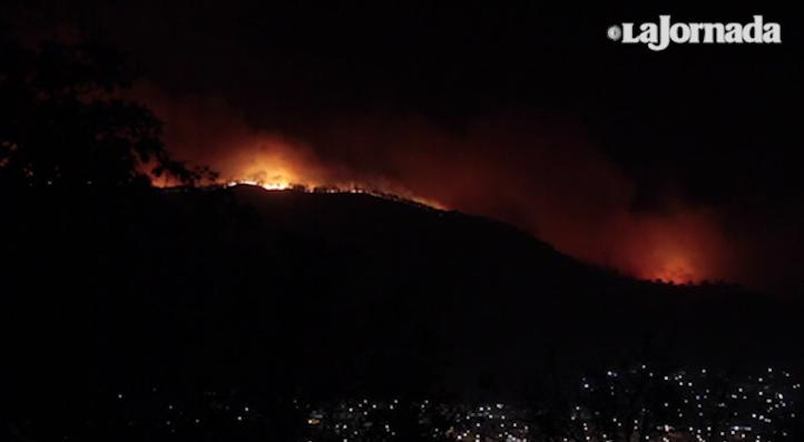 Jalisco Tras 12 Horas Sigue Incendio En El Bosque La Primavera La Jornada Videos