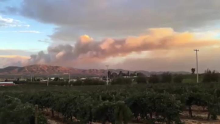 Incendio consume bosque de pinos en Baja California