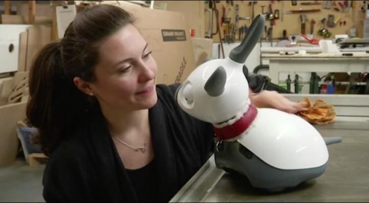 Mascotas robots para el cuidado de ancianos