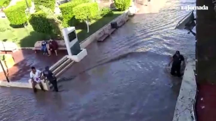 Se desborda río Acaponeta en Nayarit