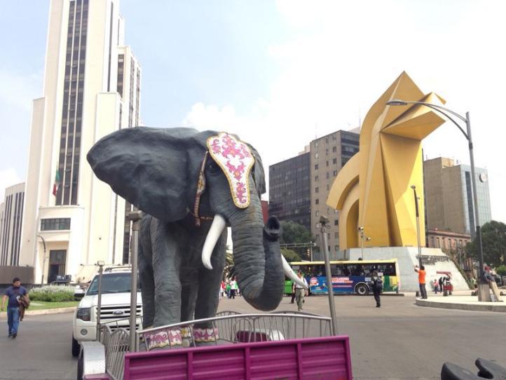 Marchan al Zócalo contra la prohibición del uso de animales en el Circo