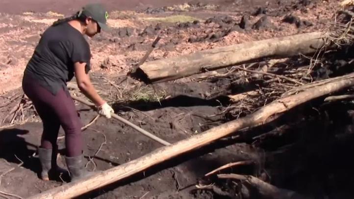 Familiares buscan en el lodo tras colapso de presa en Brasil