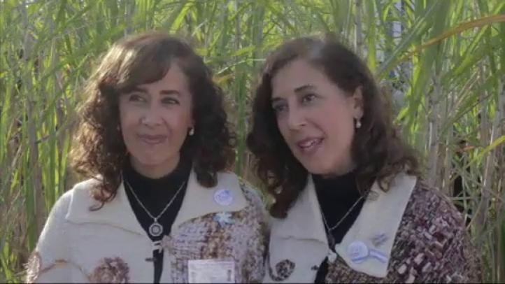 Cientos de personas celebraron el festival de gemelos en Argentina