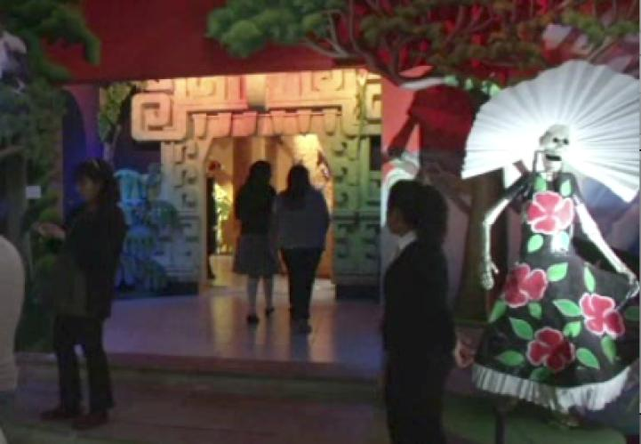 Altares de muertos en el Museo Dolores Olmedo
