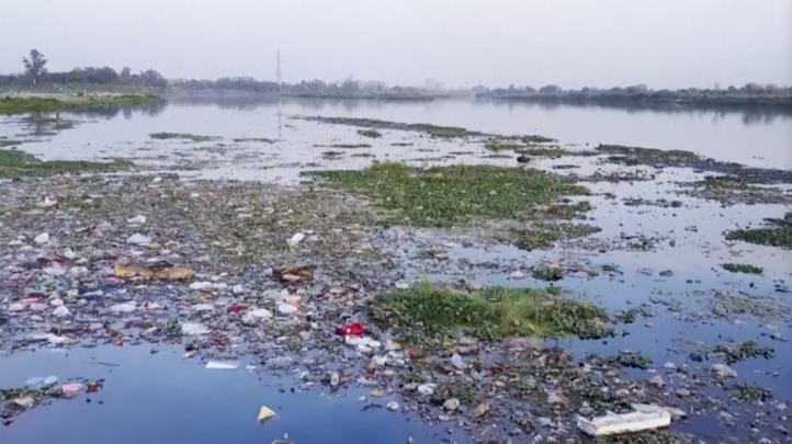 Ya no queda un solo ecosistema marino sin contaminar