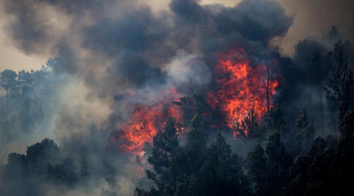 Incendio arrasa colinas boscosas en Portugal