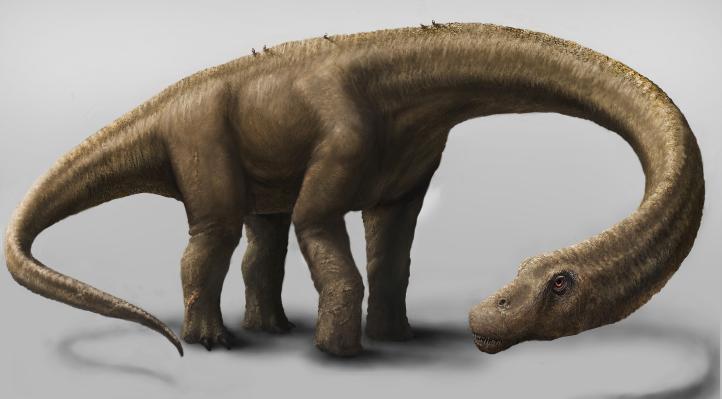 Encuentran nueva especie de dinosaurio