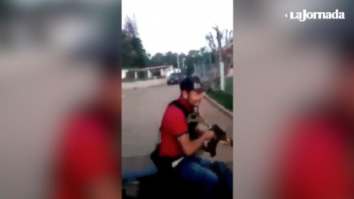 """""""¡Puro Viagra!"""", presumen a gritos desde una camioneta en Michoacán"""