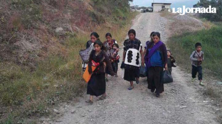Cuatro niños y dos adultos desplazados murieron de hambre y frío en Chiapas