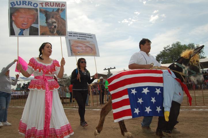 Feria nacional del burro
