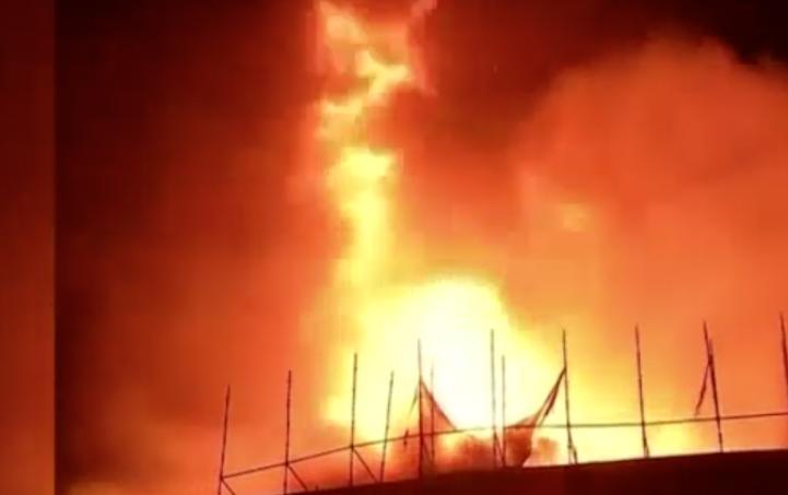 Incendio en el Museo Nacional de Historia Natural de la India