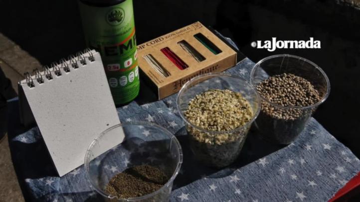 Denuncian presunta obstaculización para el acceso a fármacos derivados de cannabis