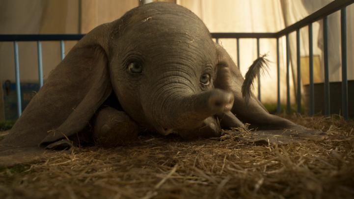 """Eva Green avanza detalles sobre el nuevo remake de """"Dumbo"""""""