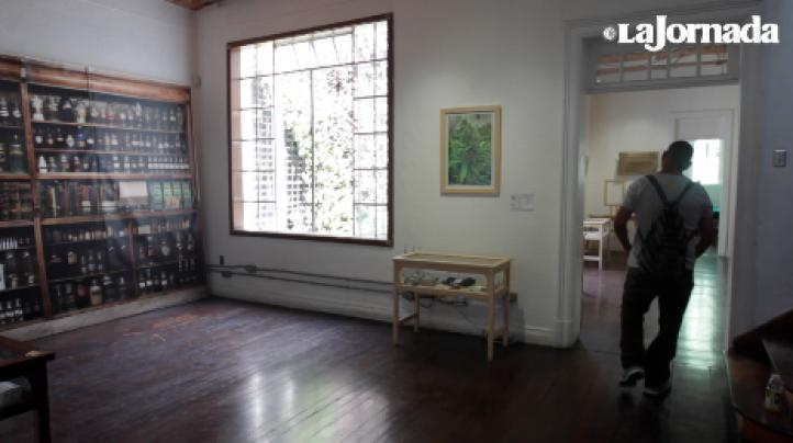 Un singular museo en la Ciudad de México está dedicado al cáñamo y la marihuana