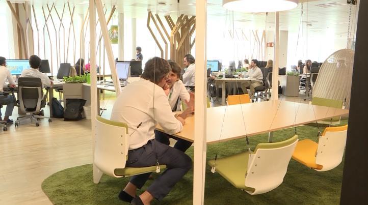 Imitar un bosque para mejorar el ambiente laboral