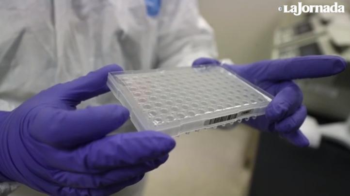 Aplicarán en la Ciudad de México 70 mil pruebas más para detectar nuevo coronavirus