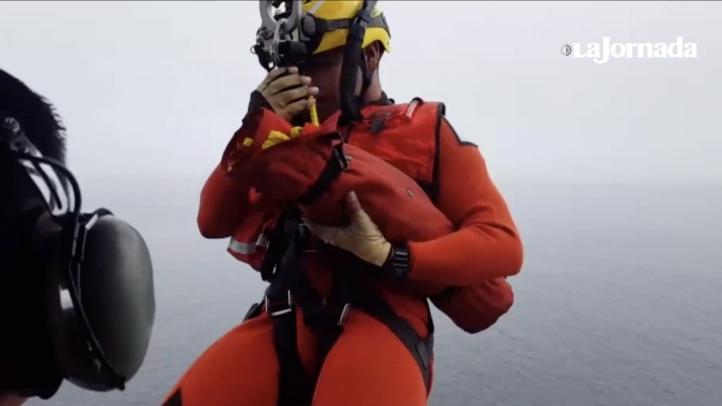 Auxilia Semar a lesionado en buque pesquero en BC