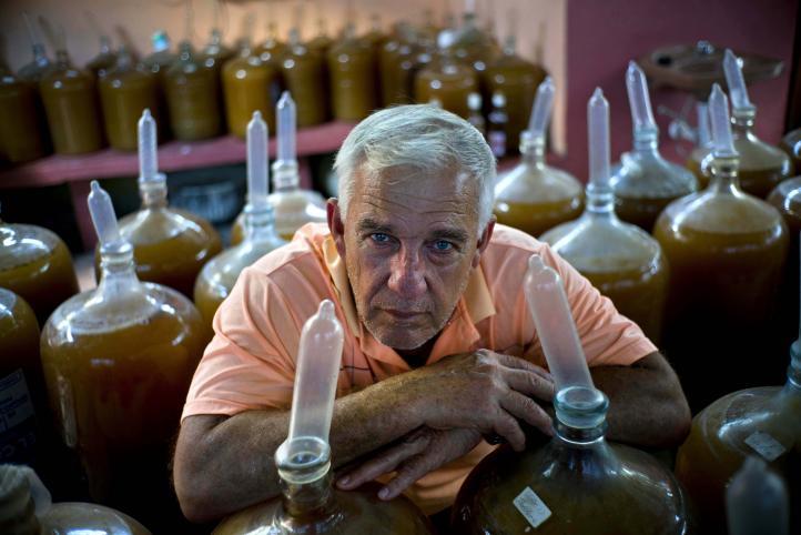 Cubano usa frutas... y condones para producir vino