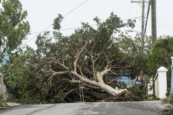 Huracán Nicole causa inundaciones en Bermudas