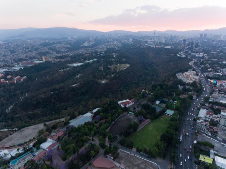 Convertirán el Bosque de Chapultepec en gran centro cultural