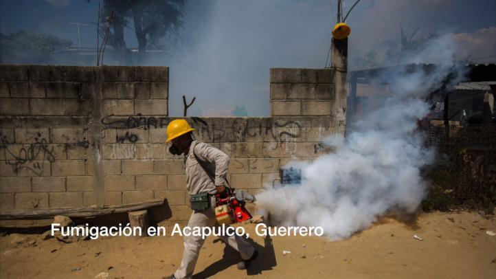La Clínica del Viajero de la UNAM ofrece recomendaciones para la emergencia del zika