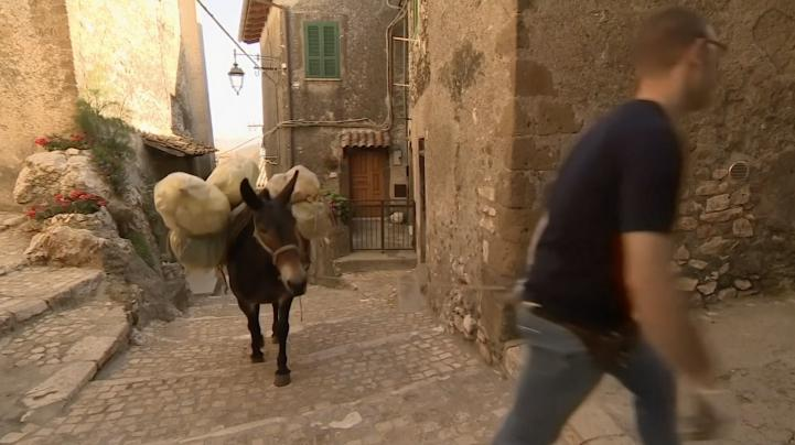 Artena: la ciudad donde el servicio de basura funciona con mulas