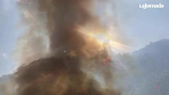 Reportan incendio forestal en Tepoztlán