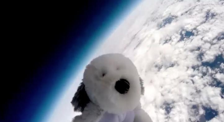 Un perro de peluche llega a la estratósfera