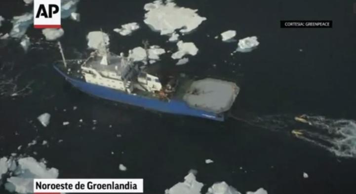 El derretimiento de los hielos marinos ya afecta la vida humana y animal en Ártico