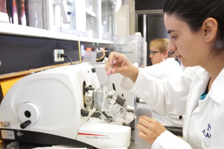 Consumo de yodo reduce incidencia de cáncer: UNAM